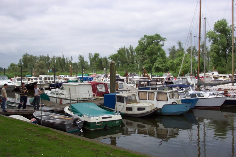 Biesbosch (3).JPG