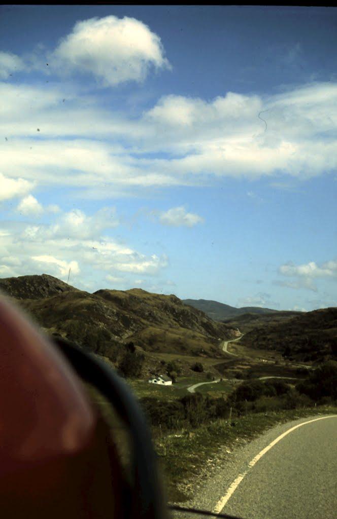 1-27-2010_052.jpg