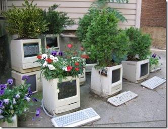 ComputerGarden