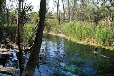 Mataranka Hot Springs Northern Territory