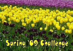 spring%2B09%2Bch%2B3.q8JKjjsWx8GH.jpg