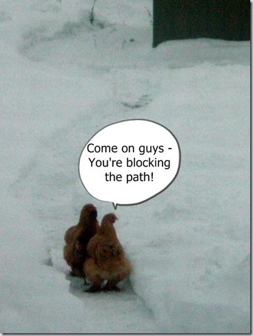 Blocked  :)