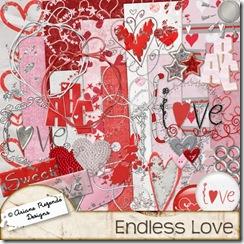 arianerez_endlesslove