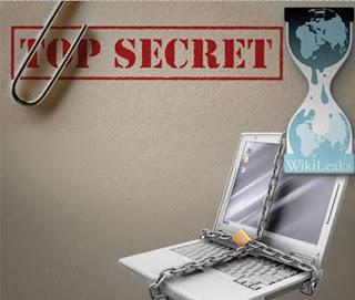 Protection des sites et réseaux internet en Algérie,La leçon WikiLeaks