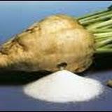 Relancer la production de la betterave sucrière et développer les oléagineux