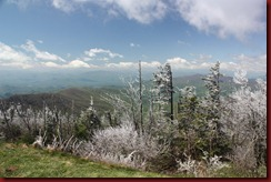 Clingmans Dome Smoky Mtn NP (15)