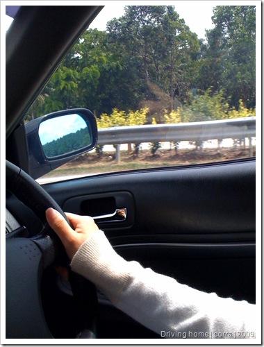 drivinghome2