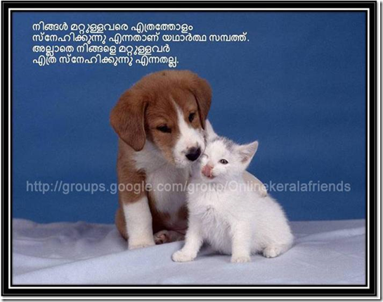 Beautiful Friendship Quotes Malayalam