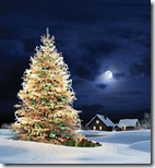 Christmas-new-year-wallpapers (43)