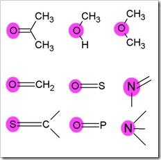 H-bondacceptors