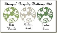 SR_colour_challenges-SR61