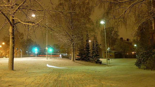 2010-10-23 Umea First Snow 016