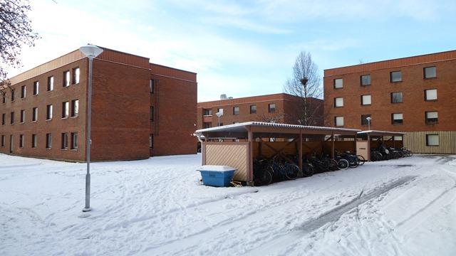 2010-10-23 Umea First Snow 045