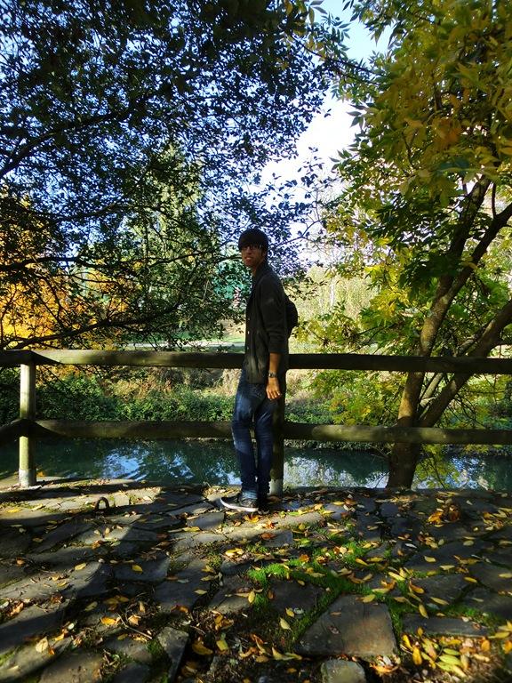 Lagares otoño 014