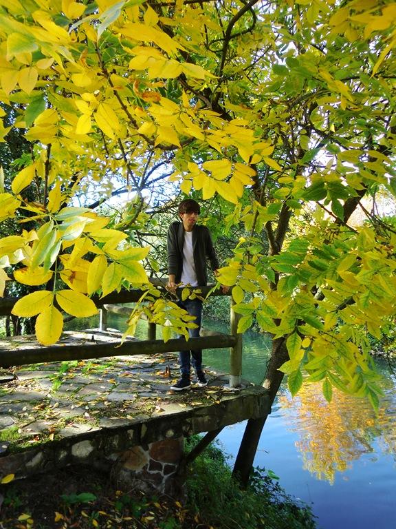 Lagares otoño 016