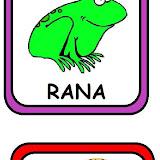 RANA-LANA.jpg