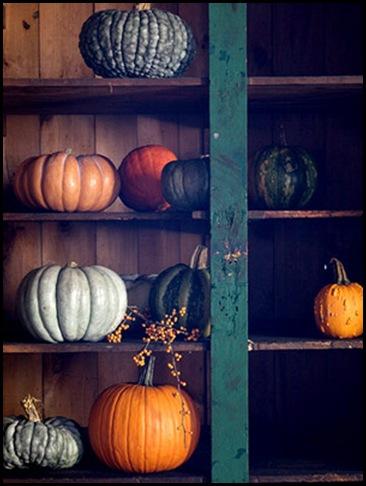 ss_FolkArtPumpkins098