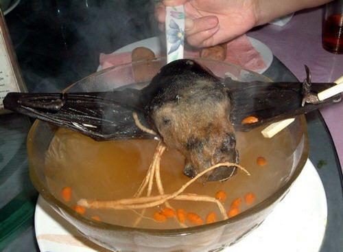 Sopa de morcegos