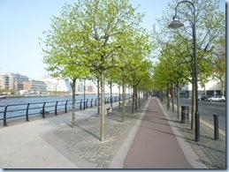 bike laneP1060638