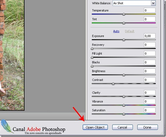 Abrir imagem do camera raw como Smart Object 0002