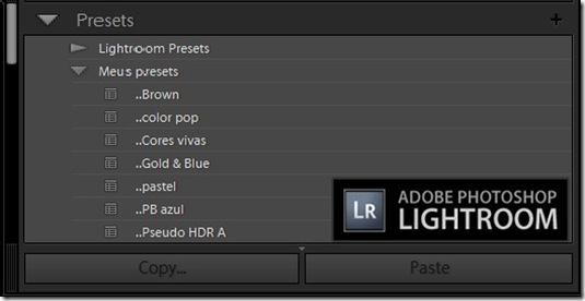 Presets adobe Lightroom[3]