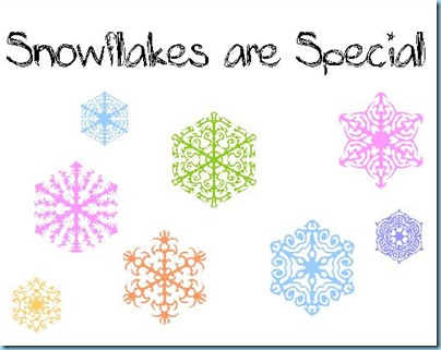 Snowflakes are Special2
