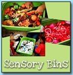 Sensory-Bins62