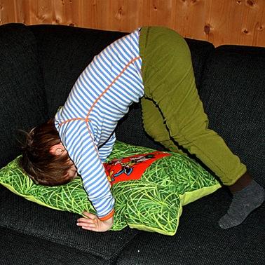 Ben pillow 500_3