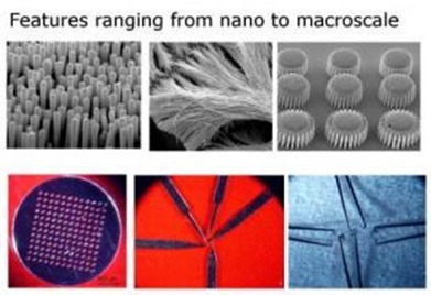 Various parts (nano-molds, nano-wires, gears, membrane, scalpels, and tweezers) fabricated by molding metallic glass over wide range of length scales -- from 13 nm to several millimeters. (Credit: Kumar/Schroers(Yale))