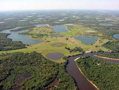 http://lh4.ggpht.com/_pQyvcBbJ0Fs/SZoUYbA4teI/AAAAAAAAALs/BvHbIFJiPHE/Pantanal%20by%20air%5B1%5D%5B5%5D.jpg