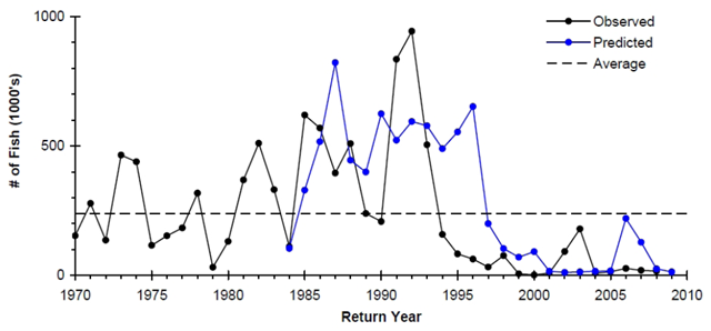 Returns and forecasts of Rivers and Smith Inlet sockeye salmon, 1970-2009. 2010 Canadian Marine Ecosystem Status and Trends Report