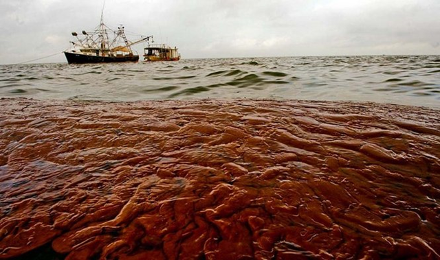 A shrimp boat modified to collect oil floats past a boat-sized oil slick from the Deepwater Horizon Oil Spill in the Gulf of Mexico near Bird Island / Queen Bess Island Saturday June 5, 2010. MATTHEW HINTON / THE TIMES-PICAYUNE