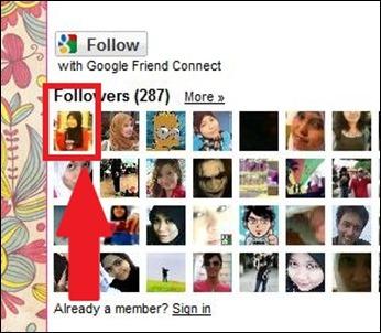 follower