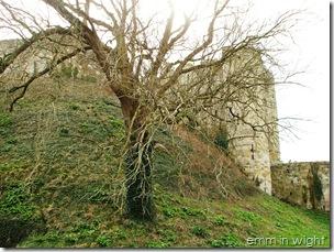 Carisbrooke Castle 04