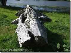 Loch Monzievaird (62)