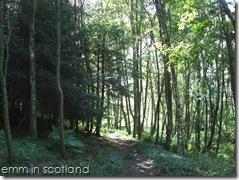 Loch Monzievaird (37)