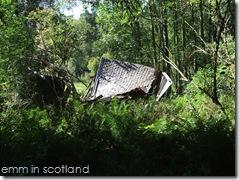 Loch Monzievaird (38)