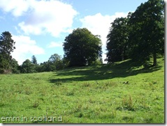 Loch Monzievaird (51)