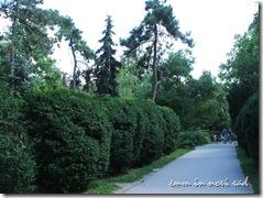 Dunavski Park, Novi Sad (2)