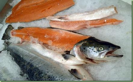 Salmon_cut_2