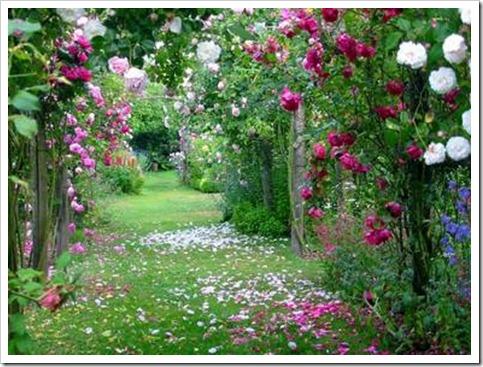 jardins-e-afins-03