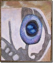 turtle_eye