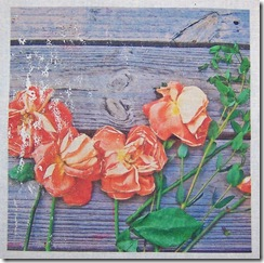 roses_against_wood_TAP_transfer
