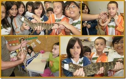Fotos Semana 27-0912