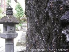 Haruna Shrine 05