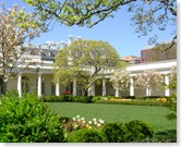 white house garden