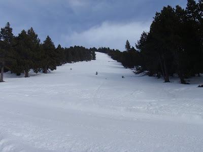 Antiga pista d'esquí actualment en desús per on hem pujat