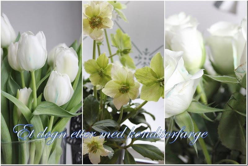 konditor farge blomster