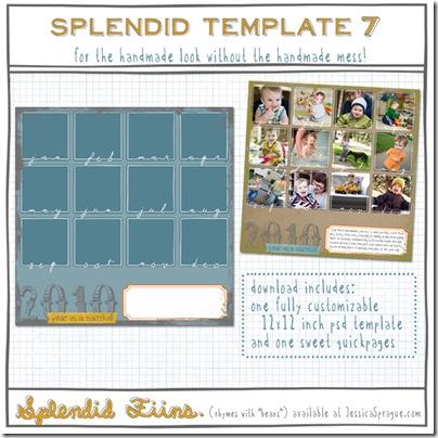 Splendid_Templat_4d07d6ef34dfb