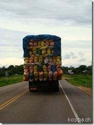 110219 auf Weg nach Cochabamba